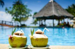 9074d72b034 Como criar um Drinque Tropical para esse verão